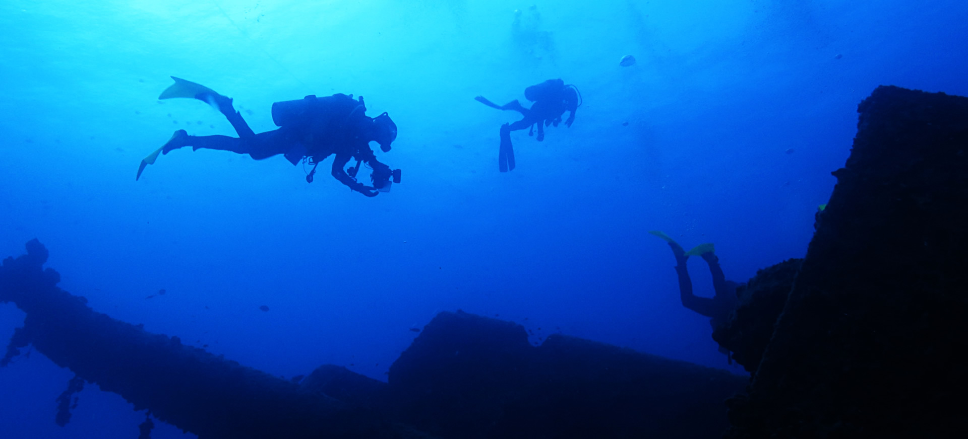Key largo diving snorkeling watersports at ocean divers xflitez Choice Image